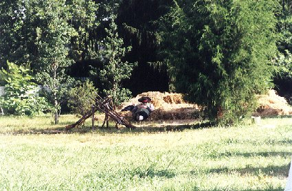 British Occupation Weekend, Colonial Williamsburg, 2000
